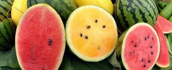 Carlsbad Farmers Market Today 3pm Watermelon Season Is Here North County Daily Star